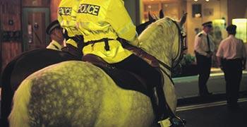 350policehorse_4